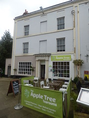 The Apple Tree Tearooms - Old Square, Warwick (ell brown) Tags: greatbritain trees england tree unitedkingdom warwick warwickshire churchst oldsquare gradeiilisted gradeiilistedbuilding stuccobuilding oldtiledroof churchstwarwick oldsquarewarwick tuscancolumnsandentablature theappletreetearooms 57oldsquare panelledpilastersatquoins neogeorgianpairofshopwindows