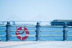 Yokohama Bay (inoc) Tags: ocean sea bay baybridge yokohama 横浜