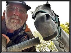 Pret met Anisa (gill4kleuren - 12 ml views) Tags: horse white me fun outside happy gill anisa paard pret arabier