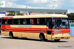 12003-3 (American Bus Pics) Tags: mono goinia monobloco mercedesbens goiansia o400