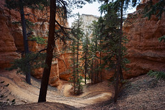 Peek-A-Boo Loop (labrewin) Tags: nature zeiss outdoors utah sony brycecanyon nationalparks sedimentary a7 clou 21mm peekabooloop zm21mm28