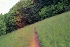 (charpotte) Tags: life love nature analog 35mm adventure