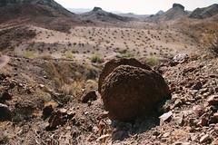 5R6K2459 (ATeshima) Tags: arizona nature havasu