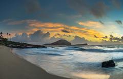 The Early Bird (jaygarces808) Tags: ocean sky panorama beach clouds sunrise hawaii waves sony palmtrees