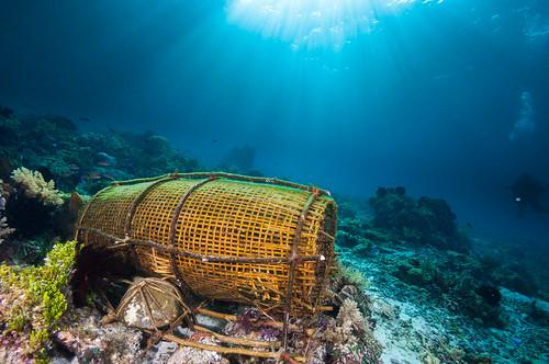Fishermans net (Pantar Island, Alor)
