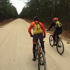 Definitely the road less traveled!  #weavercycleworks #custombicycles #roadslikethese #njpinebarrens #sand