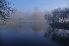 30/12: retour du brouillard -Parc des Ulis (jmsatto) Tags: couleurs hiver parc étang essonne brouilard bestcapturesaoi elitegalleryaoi