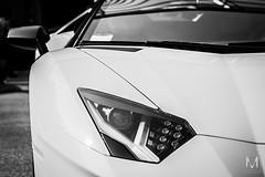 Lamborghini Aventador (*AM*Photography) Tags: auto bw white black detail car italian nikon automobile exotic headlight lamborghini supercar d3200 worldcar worldcars aventador