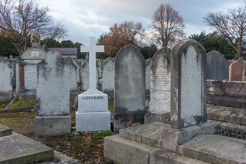 Mount Jerome Cemetery & Crematorium is situated in Harold's Cross Ref-100477