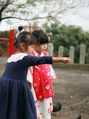 Zorie and her new friend had a great time. (Zorie Huang) Tags: trip morning light portrait baby cute girl japan canon asian temple kid child friendship pigeons innocent taiwan 5d kimono lovely fukuoka taiwanese 753 threeyearold zorie