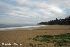 Kauai Beach (KristenMartyn) Tags: hawaii wildlife kauaibeach