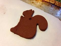 Squirrel Baked Cinnamon Ornament (stevendepolo) Tags: squirrel cinnamon ornament baked