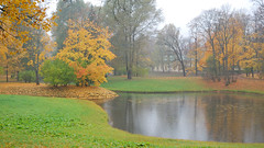 DSC_0841_2 (Taurus_tlt) Tags: autumn nature rain day petersburg санктпетербург пушкин царское