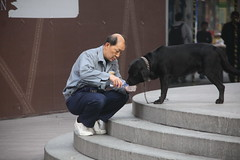 Last of Walkies with Carlos 1/12 (johey24) Tags: china street people love dogs water raw shanghai candid carlos dogmeat myths myeye doglovers loveofdogs bustingmyths wedonoteatdogs 98ofchinesedonoteatdogs onlyasmallnumberofculturesinthesouthofchinaeatdogmeat modernchinadoesnoteatdogmeat