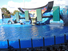 Seaworld Orlando 12-2014 (greyhound dad) Tags: christmas penguins orlando nikon florida whales seaworld p510 jamesalbright