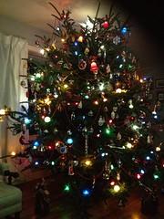 Chrstmas Tree 2014 (JeffCarter629) Tags: christmas christmastree christmaslights generalelectricchristmas gechristmaslights