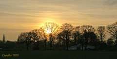 Sunset near Ede (Cajaflez) Tags: trees winter sunset zonsondergang bomen hiver nederland thenetherlands paysbas ruby10