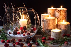 Lights for the Winter Solstice (memoryweaver) Tags: christmas winter stilllife candles solstice wintersolstice yule candlelight pagan birchbark shortestday wheeloftheyear winterdecoration albanarthan candledecoration memoryweaver wintervase