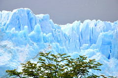 890 Glacier Perito Moreno (Docaron) Tags: argentina argentine glacier patagonie peritomoreno glaciar lagoargentino elcalafate blueplanet parquenacionallosglaciares cordillèredesandes santacruzdistrict andespatagónicos lacargentino patagónicosur dominiquecaron