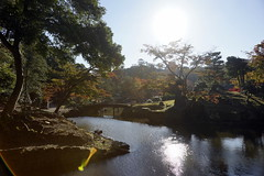 (ddsnet) Tags: travel japan sony 99  nippon  nihon slt backpackers         singlelenstranslucent 99v