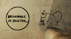 Brixton crack squirrel is back! (id-iom) Tags: street uk england urban streetart london art wall cool stencil pub squirrel paint arts coke crack vandalism wired spraypaint brixton idiom aerosolpaint