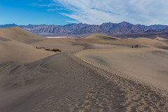 Death Valley Trip - Nov 2014 - 269 (www.bazpics.com) Tags: california park ca trip november winter usa tree america point death us sand unitedstates desert joshua weekend dunes saturday visit national mesquite crater valley deathvalley zabriskie ubehebe 2014 theraceway barryoneilphotography