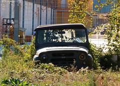 UAZ 469 (Alessio3373) Tags: abandoned rust decay neglected rusty rusted abandonment ruraldecay decayed rustycars unloved unused abandonedcars uaz rustinpeace uaz469 autoabbandonate