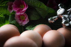 Kitchen Scene (Andre Strauss) Tags: flowers kitchen canon blumen eggs küche eier 550d