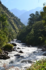 Lower Langtang Valley (sebip!) Tags: park nepal mountains trekking trek river landscape nationalpark high asia asien stream hiking altitude w berge national backpacking valley himalaya landschaft himalayas langtang lirung