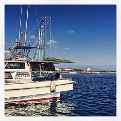 2015/01/12(Mon) 01:03pm,    [iPhone5s ProCamera7]  # # # #photooftheday #igworldclub #instadaily  #haiku #haikuandphoto #haikugram #Japan #Kumamoto # # # # # # # # #ship #port #sea #sky (toru_kimura) Tags: sea sky cloud beach japan port square harbor ship wind space air sandy tide fine wave sunny clear shore squareformat  breeze  seashore    crema  kumamoto amakusa      seabreeze          iphoneography instagramapp uploaded:by=instagram foursquare:venue=501dfeefe4b0b87f23974e41