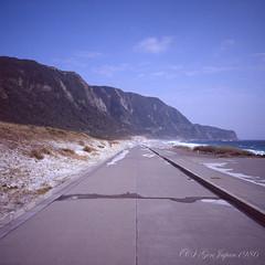 20160320-11 (GenJapan1986) Tags: 2016 fujifilmgf670wprofessional         6x6 film tokyo island travel  japan sea pacificocean landscape niijima fujifilmprovia400x