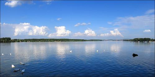 Swollen Danube