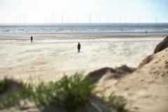 Aliens on the beach (pentlandpirate) Tags: sea sculpture art beach liverpool wind statues crosby turbines antonygormley merseyside anotherplace