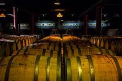 Aliana Underground Museum (Alfredo Mateus Photography) Tags: museum wine winery wines anadia portuga sangalhos alianaundergroundmuseum alianavinhosdeportugal museusubterrneo