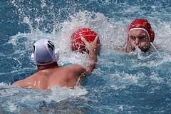 686_R.Varadi_R.Varadi (Robi33) Tags: summer men sports water swimming ball fight action basel swimmingpool watersports waterpolo sportspool waterpolochampionship