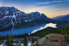 Peyto Lake at Dusk (Ding Ying Xu) Tags: lake landscape evening dusk banffnationalpark peytolake canadianrockies