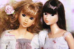 """Tag Game:""""Dolls With Freckles"""" ( Lily Queens ) Tags: game doll dolls with antique tag dreaming miel freckles malin sekiguchi momoko monchhichhi"""