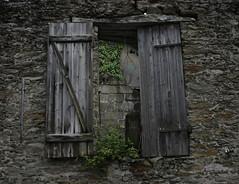 fenetre sur... (Franck Chicot) Tags: plante pierre ruine mur fentre volet