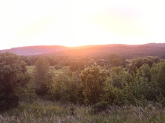 (Leela Channer) Tags: trees sunset summer panorama france green nature landscape spring scenery south hills stitched gard garrigue