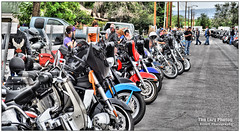 June 11 2016 - Cody Cancer Run bikes lined up for blocks (lazy_photog) Tags: charity photography indian motorcycles victory harley lazy wyoming cody davidson elliott photog 061116codycancerpokerrun