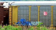 kater (timetomakethepasta) Tags: kater freight train graffiti kcs autorack kansas city southern art
