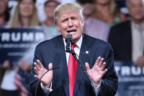 From flickr.com: Donald Trump {MID-294706}