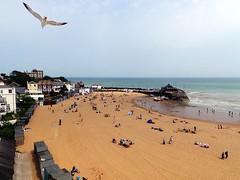 Sea Gull Over Broadstairs (crashcalloway) Tags: sea beach kent seagull southcoast broadstairs