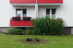Dortmund (heleconia) Tags: urban green window horizontal germany deutschland europa fotografie outdoor balcony balkon fenster nrw grn ruhrgebiet dortmund nordrheinwestfalen innenstadt ruhrpott niemand imfreien drausen abwesenheit farbbild urbanenatur ausenaufnahmevongebuden