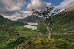 'Summer Evenings In the Cwm' - Cwm Idwal, Snowdonia (Kristofer Williams) Tags: cloud mountain lake tree wales landscape wind outdoor figure hiker mountainside snowdonia hillwalking selfie northwales cwmidwal penyrolewen llynidwal