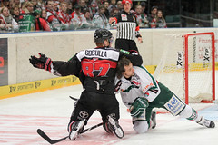 """DEL15 Kšlner Haie vs. Augsburg Panthers • <a style=""""font-size:0.8em;"""" href=""""http://www.flickr.com/photos/64442770@N03/15679862614/"""" target=""""_blank"""">View on Flickr</a>"""