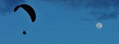 Fly Me To The Moon |  Candid (AnNamir c[_]) Tags: annamir paragliding paraglidingkualakubu paraglidinghuluselangor paraglidingmalaysia inspirationaviationclub sifunafi tandem tandemfly moog flytothemoon paramotor tamanmillenium malaysia paraglidingpark paraglidingkkb takeoffsite nikon silhouette silueta siluet gliding sunset darulquranjakim kualakububharu huluselangor supermoon2016 supermoon
