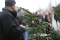 Berlin Marzahn-Hellersdorf 14.12.2014  Weihnachtsbaum Aktion  IMG_8291 (Thomas Rossi Rassloff) Tags: berlin weihnachten protest weihnachtsbaum marzahn brger flchtlinge rassi