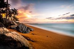 DreamBeach (DaOpfer) Tags: k7 pentax tag13 srilanka sigmaaf1020mm4056exdc beach strand sonnenuntergang sunset palmen langzeitbelichtung longexposure meer sea photosergelandscape91