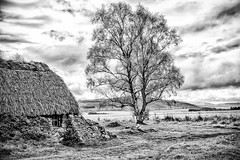 Farmhouse Dwelling At Culloden Moor Battlefield, Scotland (Peter Greenway) Tags: blackandwhite bw farmhouse scotland battlefield inverness culloden dwelling jacobites thatchedcottage cullodenmoor cullodenbattlefield